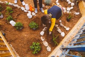 Φυτεύοντας